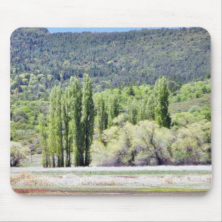 Lakes With Green Trees Marshes Mousepads