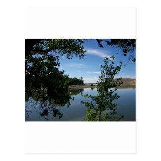 Lakeshore Postcard
