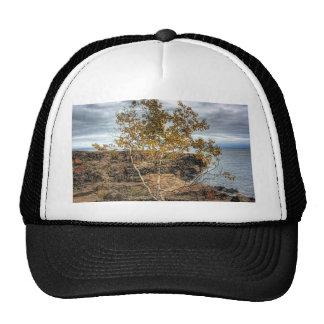 Lakeshore Tree Trucker Hat