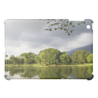 Lakeside Case For The iPad Mini