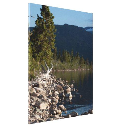 Lakeside Splendor; No Text Canvas Print