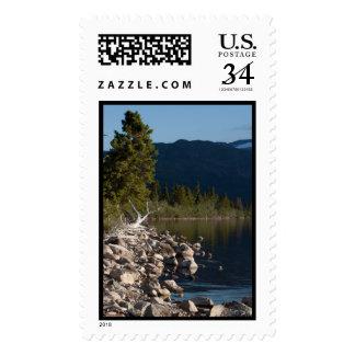 Lakeside Splendor; No Text Postage Stamp