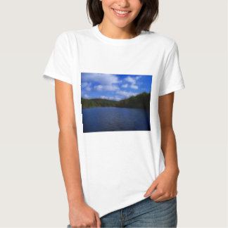 LakeViewz2 Shirt