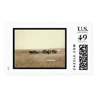 Lakota Indian Skinning Cow at Beef Issue Stamps