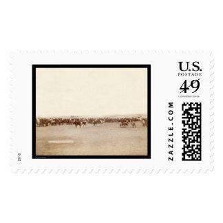 Lakota Indians on Horseback Pine Ridge SD 1891 Stamps
