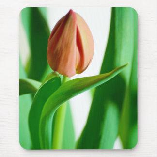 lala Tulip Mousepad