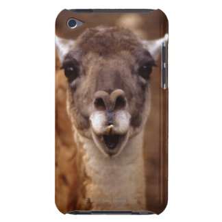 lama barely there iPod cover