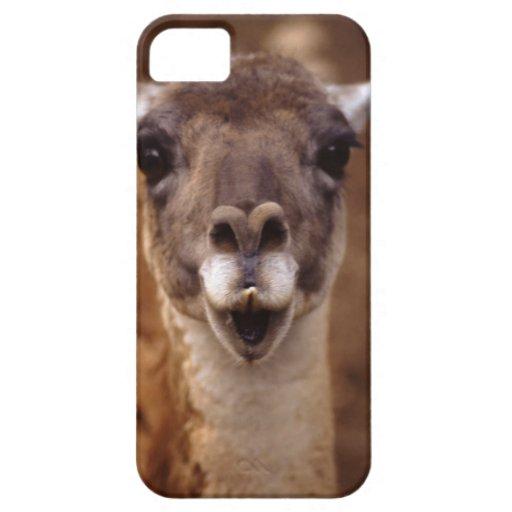lama iPhone 5 Case-Mate coberturas