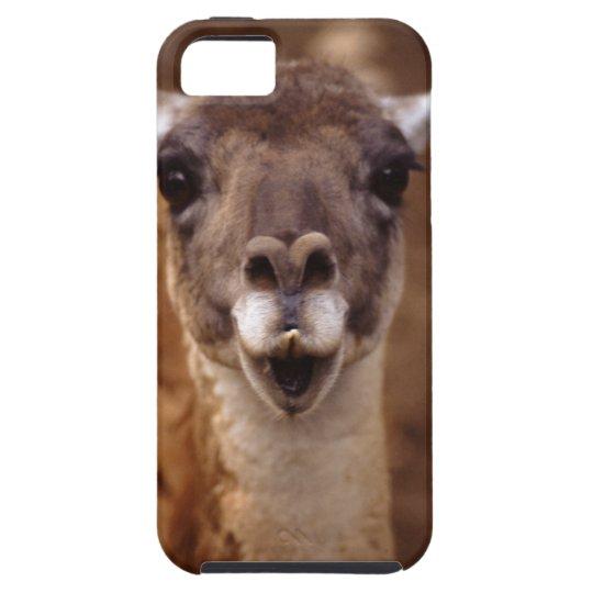 lama iPhone SE/5/5s case