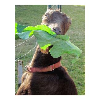 Lamancha Goat Letterhead