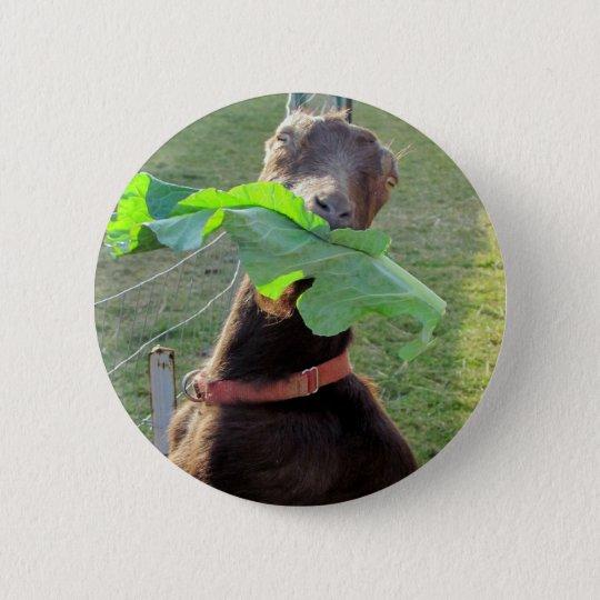 Lamancha Goat Pinback Button