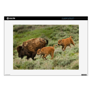 Lamar Valley Mini Stampede Decal For Laptop