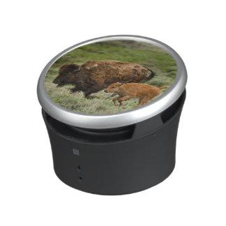 Lamar Valley Mini Stampede Speaker