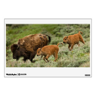 Lamar Valley Mini Stampede Wall Decal