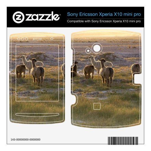 Lamas en la puesta del sol xperia x10 skins
