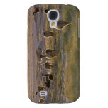 Lamas in the Sunset Samsung Galaxy S4 Covers
