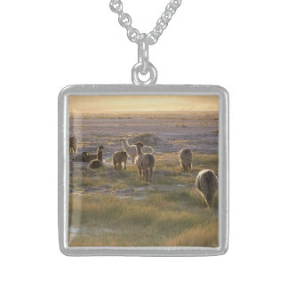 Lamas in the Sunset Sterling Silver Necklace