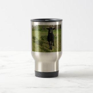 Lamb 2012 - Jilly Mugs