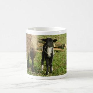 Lamb 2012 - Paul-B Coffee Mugs