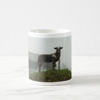 Lamb 2012 - Shimo Coffee Mug