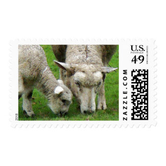 Lamb and Mama Postage