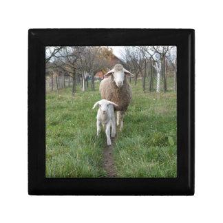 Lamb and sheep jewelry box