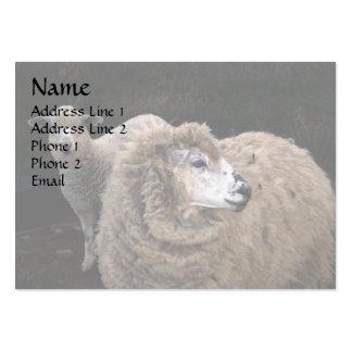 Lamb and Sheep Large Business Card