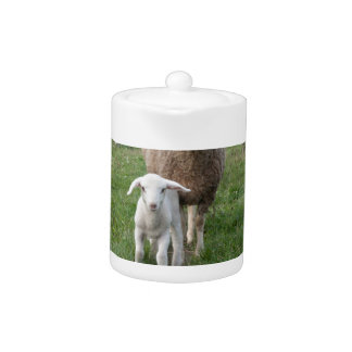 Lamb and sheep teapot
