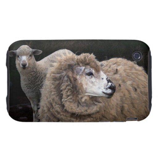 Lamb and Sheep Tough iPhone 3 Cases