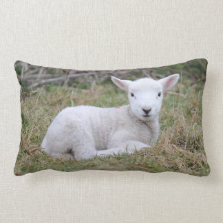 Lamb at rest lumbar pillow