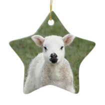 Lamb Ceramic Ornament