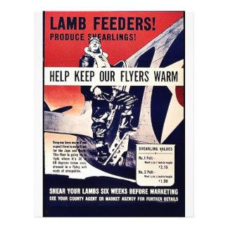 Lamb Feeders! Flyers