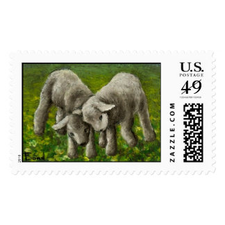 Lamb fight postage stamps