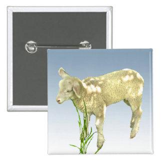 Lamb Grazing in the Green Grass Button