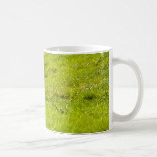 lamb in a dip coffee mug