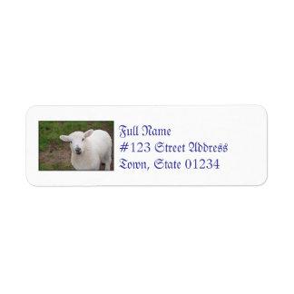 Lamb Custom Return Address Label
