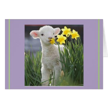 malhcreations Lamb of Easter, no overrated bunnies Card