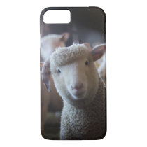 Lamb Paused iPhone 8/7 Case