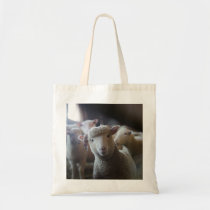 Lamb Photo Tote
