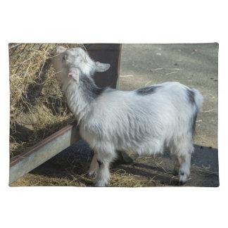 Lamb placemat