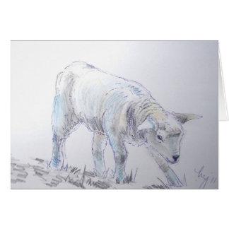 Lamb sketch drawing card