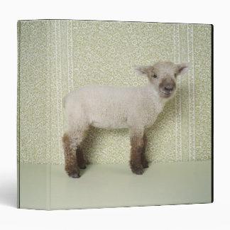 Lamb Standing Indoors, and Floral Wallpaper 3 Ring Binders