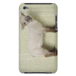 Lamb Standing Indoors, and Floral Wallpaper Case-Mate iPod Touch Case