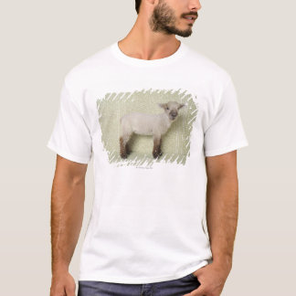 Lamb Standing Indoors, and Floral Wallpaper T-Shirt