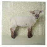 Lamb Standing Indoors, and Floral Wallpaper Large Square Tile