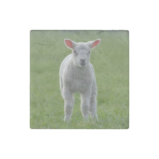 lamb stone magnet