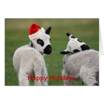 lamb with christmas hat card