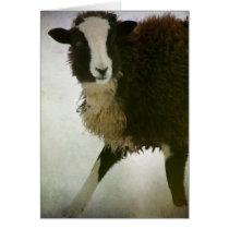 Lambchops Christmas Card