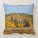 Lambert Hollow, aspen trees Throw Pillows