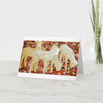 Lambs Holiday Card